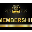 Membership Card Shows Very Important Person And Application — Stock Photo #49085421