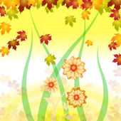 Background Flowers Shows Backgrounds Abstract And Design — Stock Photo