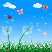 Copyspace Butterflies Indicates Flora Flower And Blank — Stock Photo