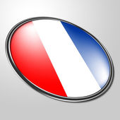 Dutch Badge Represents National Flag And Country — Stock Photo