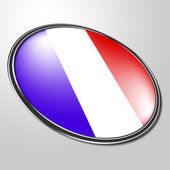 French Badge Represents National Flag And Badges — Stock Photo