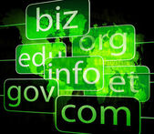Biz com net shows websites internet or seo — Photo