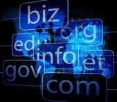 Biz com net shows websites internet and seo — Photo