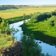 Stockfoto: Summer landscape. Small river