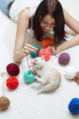 Playful cat — Stock Photo