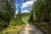 Paisagem alpina — Fotografia Stock