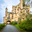 Hohenschwangau castle — Stock Photo #37991425