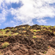 Vesuvius — Stock Photo #37994183