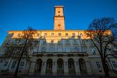 City Hall in Lviv , Ukraine — Stockfoto
