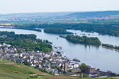Rhine River — Stock Photo