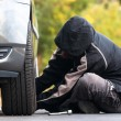 Stock Photo: Young mrepairing car outdoors