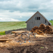 Stock Photo: Wood industry outdoors