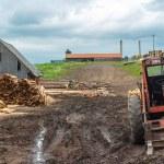 Dřevozpracující průmysl outdoorsm s červeným traktorem — Stock fotografie