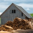 Wood industry outdoors — Stock Photo