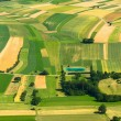 Agricultural field aerial view -  