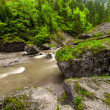 Fast mountain river — Stock Photo