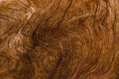 抽象的な天然木製テクスチャ背景 — ストック写真
