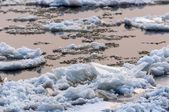 Cold chilly ice on the water — Stock Photo