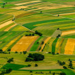 Green fields aerial view before harvest — Stock Photo #21306455