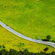 Green fields with road — Stock Photo
