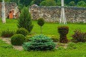 Belo parque com arbustos e plantas — Foto Stock