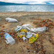 Stock Photo: Rubbish on shores of ocean