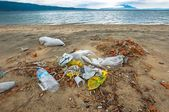 Rubbish on the shores of an ocean — Stock Photo