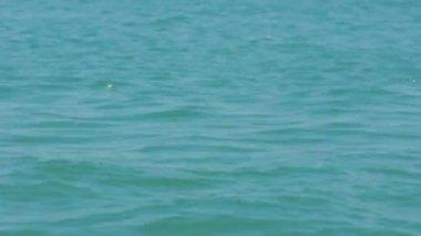 Closeup footage of deep blue sea — Stock Video
