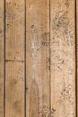Wooden texture closeup — Stock Photo