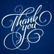 THANK YOU hand lettering (vector) — Stock Vector