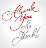 THANK YOU SO MUCH hand lettering (vector) — Stock Vector
