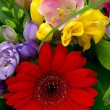 Colorful flowers bouquet isolated on white background. — Stock Photo #12600130