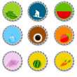 Set of bottle caps.vector illustration — Stock Vector
