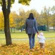 A child in the autumn on the nature and mother — Stock Photo