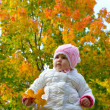 A child in the autumn on the nature — Stock Photo