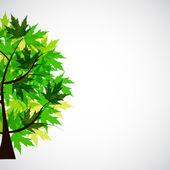 Tasarlamak vektör bahar ağacı çizim — Stok Vektör
