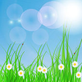Spring green background. Grass and flower. — Stock Vector