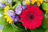 Colorful flowers bouquet isolated on white background. — Foto Stock