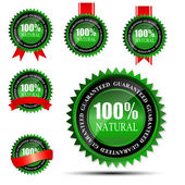 100 percent natural green label isolated on white.vector illustration — Vecteur