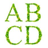 Vector alfabetletters gemaakt van voorjaar groene bladeren. — Stockvector