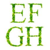 Letras del alfabeto vectorial hechas de hojas de primavera verde. — Vector de stock