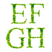 Vector alphabet letters made from spring green leaves. — Vector de stock