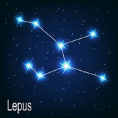 "The constellation ""Lepus"" star in the night sky. — Stock Vector"