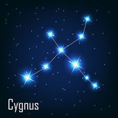 "The constellation "" Cygnus"" star in the night sky — Stock Vector"