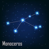"The constellation "" Monoceros"" star in the night sky. — Stock Vector"