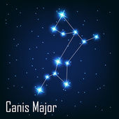 "The constellation "" Canis Major"" star in the night sky. — Stock Vector"