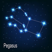 "The constellation ""Pegasus"" star in the night sky. — Vector de stock"