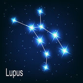 "The constellation ""Lupus"" star in the night sky. — Stock Vector"