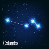 "The constellation ""Columba"" star in the night sky. — Stockvector"