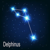 "The constellation ""Delphinus"" star — Stock Vector"